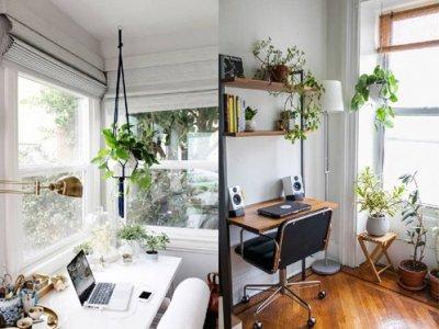 Cách thiết kế, bố trí phòng làm việc tại nhà