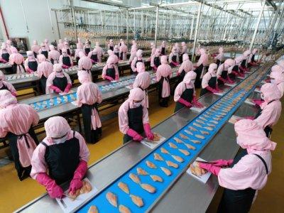 Những yếu tố quan trọng cho việc thiết xây dựng nhà xưởng - nhà kho thực phẩm